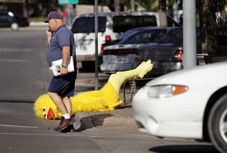 """""""Where am I? Crossing the street pretending I'm not seeing a large bird laying with its head in the gutter..."""""""